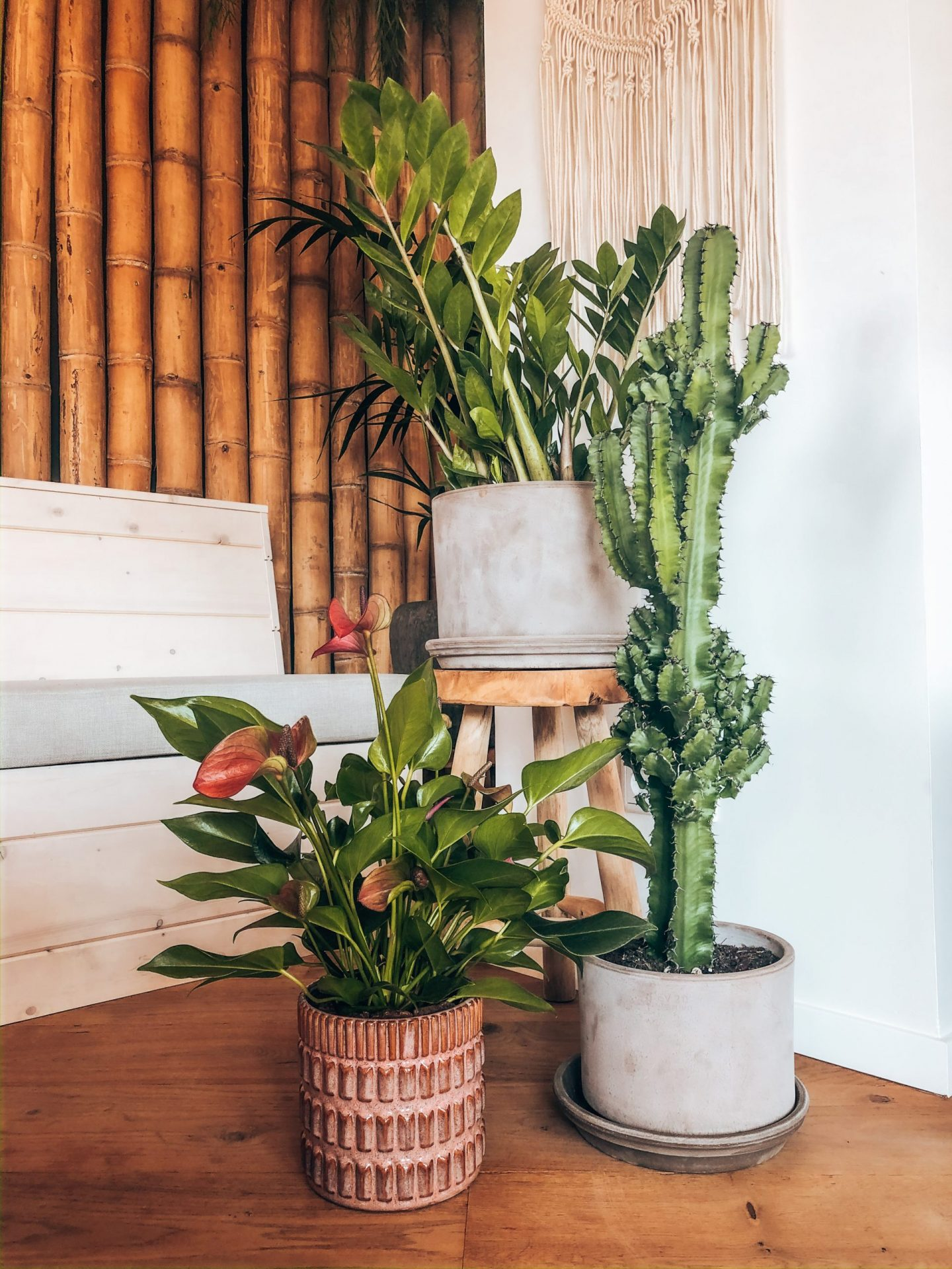 planten, plant, groen, inrichting, gezelligheid, warmte, bamboe, poef, poefjes, pouf, xmariekie, blogger, tips, interieur