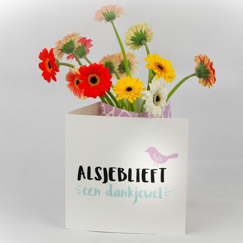 bloomincard, kaart, kaartje, beterschap, dankjewel, gefeliciteerd, cadeau, cadeautip, xmariekie